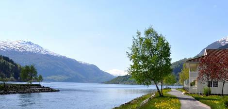 Loenfjord